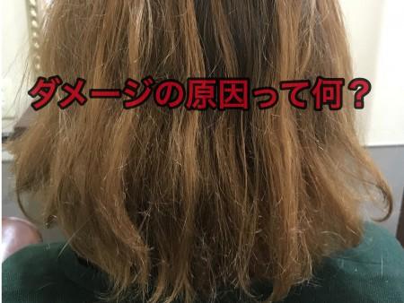 28BFCD2B-1EDE-488B-9E1C-06A258892EFA